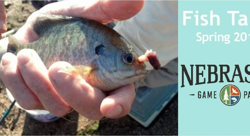 Youth Fishing Instructor Newsletter, Spring 2015