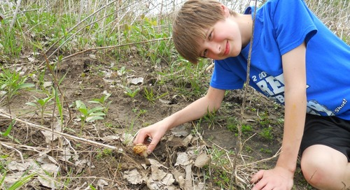 Go Morel Mushroom Hunting with WOWT 6 Outdoors