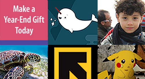 Designing for Good #5: The Best of End-of-Year Email Campaigns