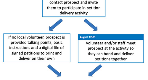 Grassroots Campaigning: How to Use Online Channels to Build Offline Support