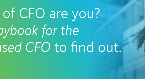 Three Roles of the Nonprofit CFO that Lead to Mission Success