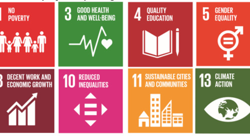 U.N. SDGs: Choosing the Right Goals for Your Organization