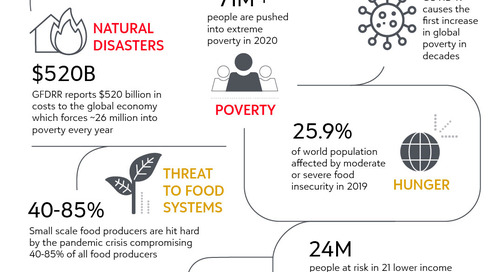 Post-Pandemic Outlook on the Sustainable Development Goals Through a CSR Lens