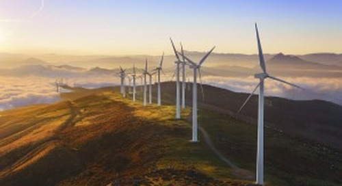 The Road to Renewables. Which Route to Take?