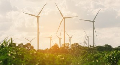Q&A: How NEO Network Is Shaping the Future of Renewables in Europe