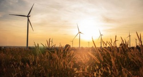Brown-Forman Invests in Renewable Energy