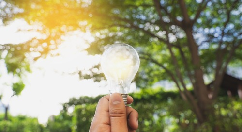 Innovative Organizations: 6 Trends for Companies Leading at the Renewable Energy Edge