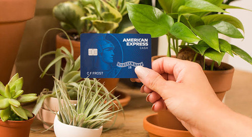 American Express introduces new cashback credit card to appeal to millennials