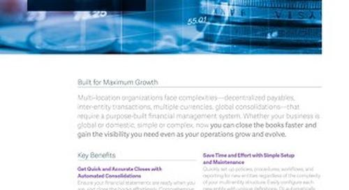 Multi Entity Financial Management
