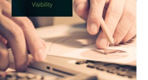Developing P&L Reports For Visibility