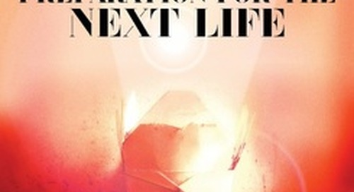 Review: 'Preparation for the Next Life' by Atticus Lish