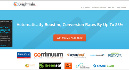 How BrightInfo Generates Leads From Your Homepage