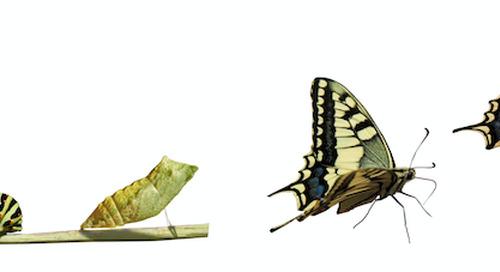 """The Continuous Transformation Imperative"" – John Hagel"