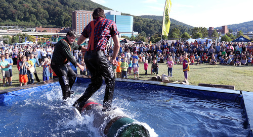 Parks and Recreation Festival Has Huge Economic Impact in Roanoke