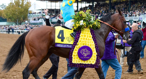 Guide to the Breeders' Cup