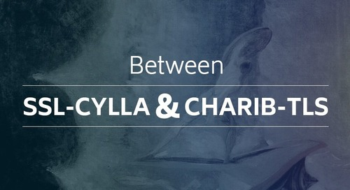 Between SSL-cylla and Charib-TLS