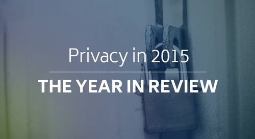 2015 Privacy In Review