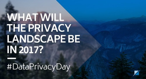 What will the Privacy Landscape Be in 2017?