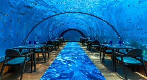 Maldives Underwater Restaurant Revamped as Temporary Yoga Studio