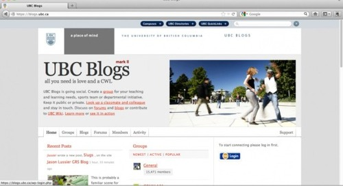 Blogs and wikis in formal higher education: examples of open education