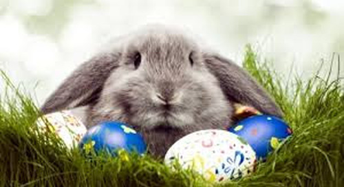 Easter Fun and Sales Event at Atlantic Coast