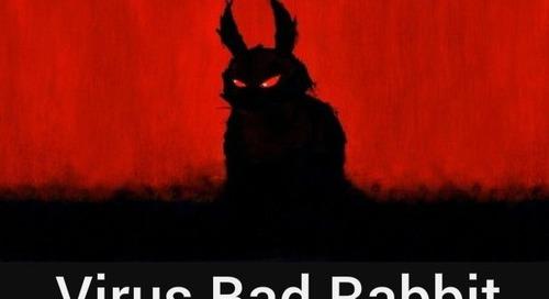 Bad Rabbit Virus: nuova ondata di attacchi Ransomware