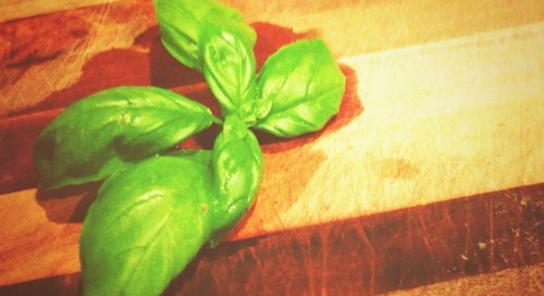 Basil herb contains exceptionally high levels of beta-carotene,...