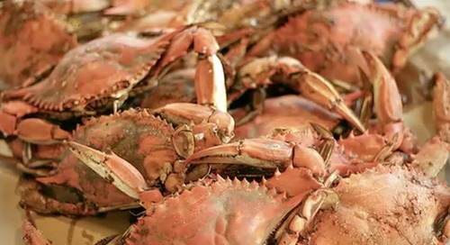 Be wary of crab from Venezuela