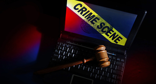Law Firms and Cyberthreats: Lawlessness in the Land of Law