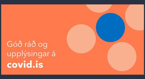 Meet in Reykjavik