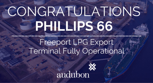 Freeport LPG Export Terminal – Phillips 66