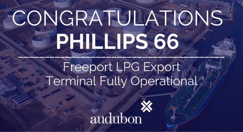 Freeport LPG Export Terminal – Phillips 66