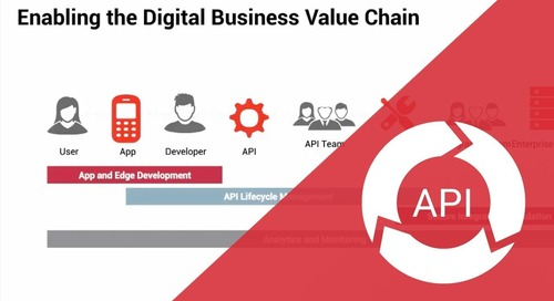 Axway AMPLIFY API Management introduction: Learn how API Management works