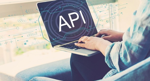 The API Culture Cycle