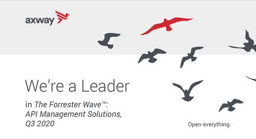 An API Management Solutions Leader