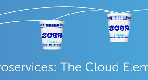 Monolith to Microservices: The Cloud Elements Experience