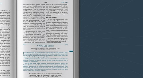 Why a Devotional Bible Can Help Start a Bible-Reading Habit