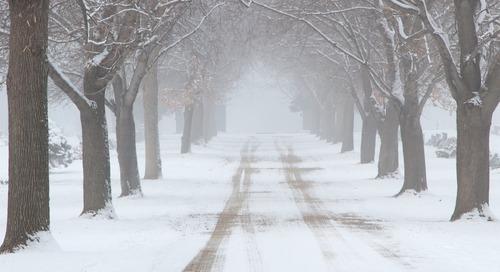 Walking through Loss during the Holidays