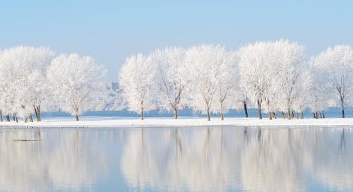 4 Ways to Find Joy in Winter