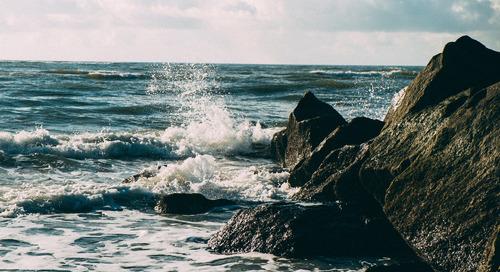 A Sea of Broken Dreams