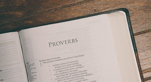 An Interview with Rev. Dr. David Coe on Provoking Proverbs
