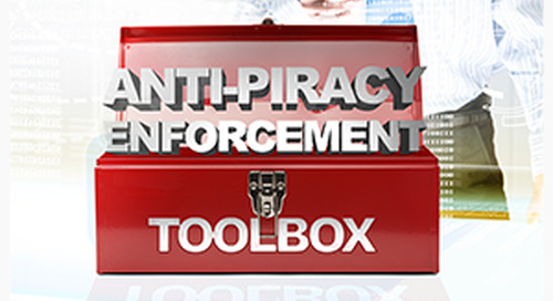 The anti-piracy enforcement toolbox
