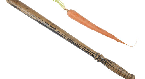 Carrot or Stick: Which is a Better Approach to Minimizing Warehouse Theft?