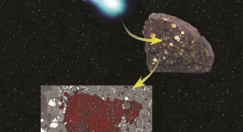 Meteorite hides a fragment of an ancient comet
