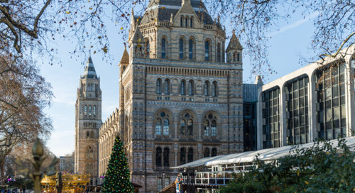 The Natural History Museum London – Behind the Scenes 1