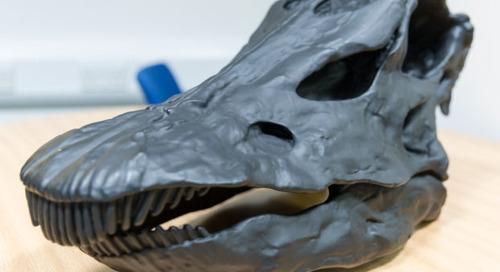 The Natural History Museum London – Behind the Scenes 2