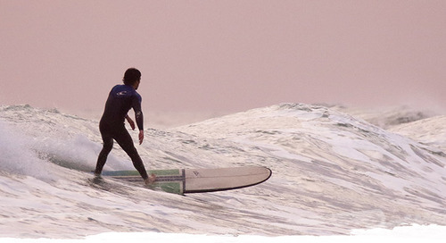 CEO 15 lessons surfing teaches you about business and life