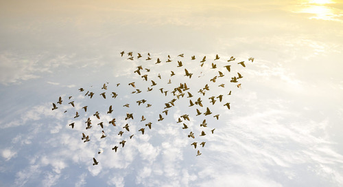 5 Things to Do Before Any Cloud Migration Project