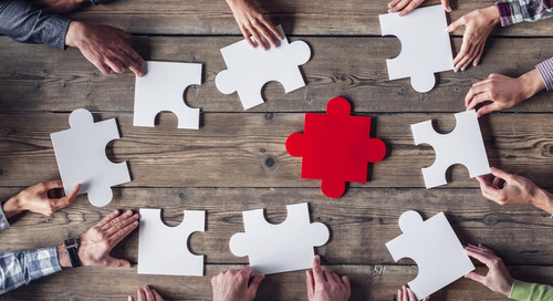 Behind the Buzzword: Flash Organizations