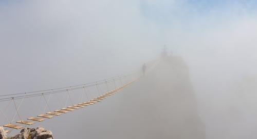 Behind the Buzzword: Human Cloud